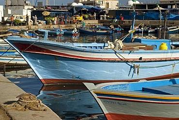Fish market in Tripoli, Libya