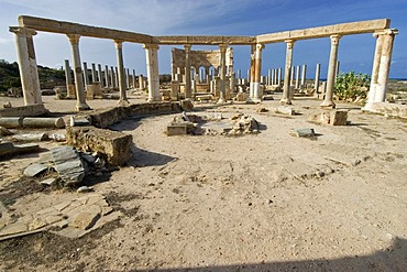 Roman market square at Leptis Magna, World heritage Site, Libya