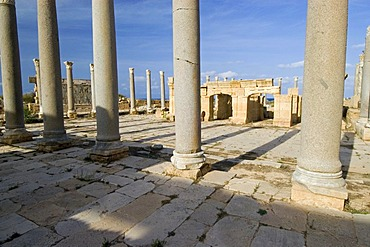 Columns in front of the theater at Leptis Magna, Unesco world heritage site, Libya
