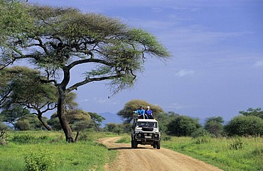 Landrover on a dirt road in Tarangire national park, Tanzania