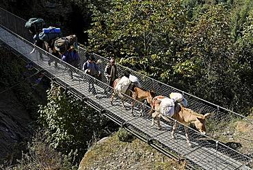 Swing bridge made of steel over Dudh Koshi river, Solukhumbu, Khumbu, Mount Everest region, Nepal