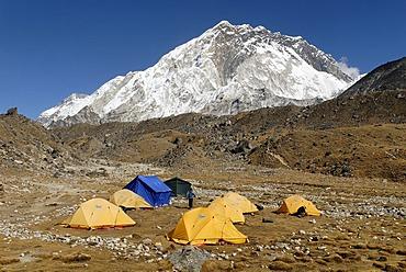 Tent camp at the Sherpa village of Lobuche with Nuptse (7861), Sagarmatha National Park, Khumbu Himal, Nepal