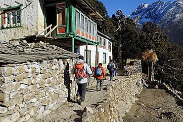 Trekking group at Sherpa village Pangboche, Sagarmatha National Park, Khumbu, Nepal