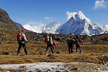 Trekking group at Chola Khola valley near Dzonglha in front of Ama Dablam (6856), Sagarmatha National Park, Khumbu Himal, Nepal