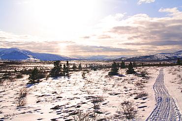 Trail in Winter landscape, tundra, plateau, sled tracks, Yukon Territory, Canada