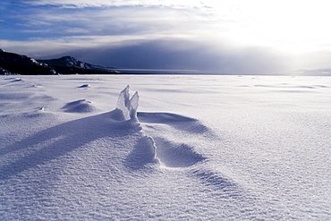 Ice floe and snow drifts, Lake Laberge, Yukon Territory, Canada