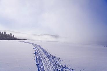 Sled tracks disappearing in the fog, frozen Lake Laberge, Yukon Territory, Canada