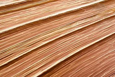 Sandstone structures, The Wave, Arizona, USA