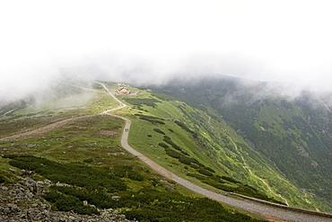 Hiking trail, Snezka, 1602 m, Giant Mountains, Czechia