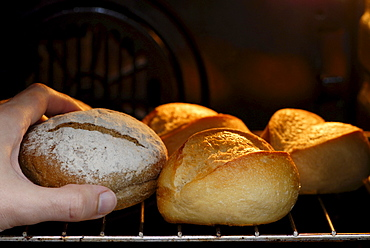 Bread rolls crisped up in the oven
