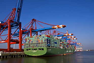 Container ships at the Eurokai container terminal, Hamburg Harbour, Germany, Europe