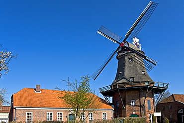Historic Dutch windmill with wind rose, Jever, East Friesland, Lower Saxony, Germany, Europe