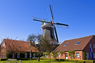 Historical windmill build in typical Dutch style showing the fantail at the back, husking mill, Esens, East Frisia, Lower Saxony, Germany, Europe