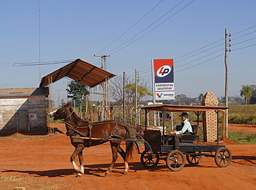 Old-style mennonites in Paraguay, boy with typical horse cart in front of a gas station