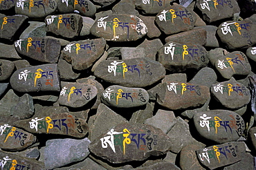 Mani stones with ornate Old Tibetan lettering: OM MANI PADME HUM, Ladakh, India, Asia