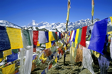 Colourful prayer flags printed with holy verses and a Wind Horse, mythical, pre-Buddhist Tibetan creature, Mt, Dhaulagiri in the background, Muktinath, Annapurna region, Himalayas, Nepal, Asia