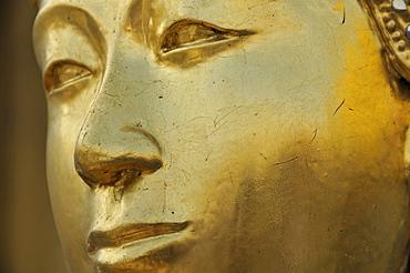 Kinnara (also called Kinari, Kinaree, Kinnaree, Ginnarie or Ginnaree), mythological bird creature, Wat Phra Kaeo Grand Palace (Temple of the Emerald Buddha), Bangkok, Thailand, Southeast Asia, Asia