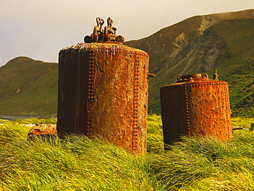 Boiler from an old station for the production of penguin oil on Macquarie Island, Australian Antarctic