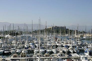 View of the marina , Port Vauban , Antibes , Provence-Alpes-Cote d'Azur , France , Europe