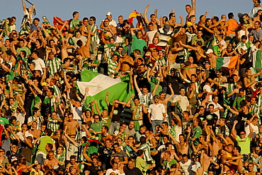 Real Betis Balompie football club fans hoisting Andalusian flags in Ramon Sanchez-Pizjuan stadium, Seville, Andalusia, Spain, Europe
