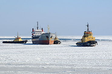 The Odessa seaport is blocked by ice, frozen Black Sea, a rare phenomenon, last time it occured in 1977, Odessa, Ukraine, Eastern Europe