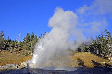 Riverside Geyser, Upper Geyser Basin, Yellowstone National Park, Wyoming, USA