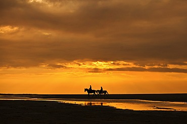 Horseriders at sunset on the beach of Borkum, Lower Saxony, Germany