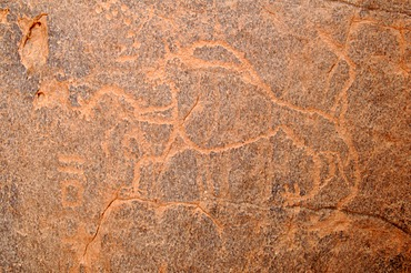 Lion engraving, neolithic rock art of the Tadrart, Tassili n'Ajjer National Park, Unesco World Heritage Site, Algeria, Sahara, North Africa
