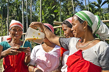 Women of the Deori tribe drinking the local beer at a family celebration, India, Asia