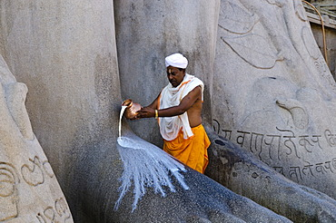 A local priest is pouring milk on the feet of the gigantic statue of Gomateshwara in Sravanabelagola, Karnataka, India, Asia