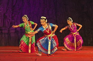 Dancers at a performance during the annual dance festival in Mahabalipuram, Tamil Nadu, India, Asia