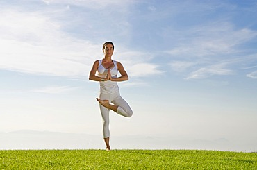 Young woman practising Hatha yoga outdoors, showing the pose vrikshasana, tree, Nove Mesto, Okres Teplice, Czech Republic, Europe