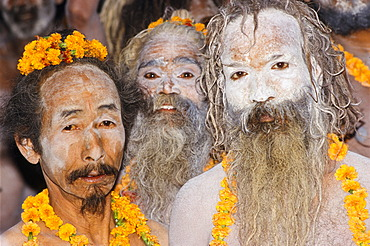 Participants in the archaic Shivratri procession, Varanasi, Uttar Pradesh, India, Asia