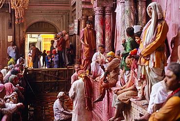 Bihari Temple during Holi festival, Vrindaban, Uttar Pradesh, India, Asia