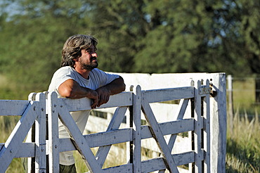 Smallholder looking over the wooden gate to the neighbouring fields cultivated by a great land owner, soybean plantation, Gran Chaco, Santiago del Estero province, Argentina, South America