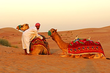 Camel guide and camel waiting for tourists, Dubai, United Arab Emirates, Middle East