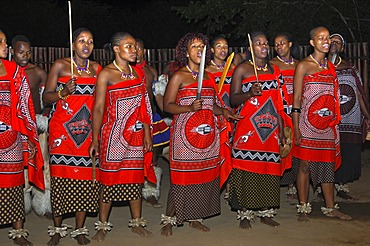Women dance troupe in traditional dress at an evening event, Traditional Cultural centre Mantenga, Ezulwini Valley, Swaziland, Africa