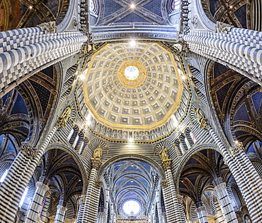 Interior view, dome of the Cathedral of Siena, Cattedrale di Santa Maria Assunta, main church of the city of Siena, Tuscany, Italy, Europe