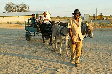 On the donkey cart, Sehitwa, Botswana, Africa