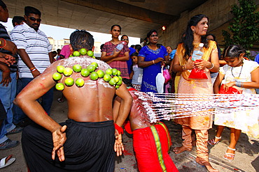 Pilgrim with spiritual piercings starting his walk, Hindu festival Thaipusam, Batu Caves limestone caves and temples, Kuala Lumpur, Malaysia, Southeast Asia, Asia
