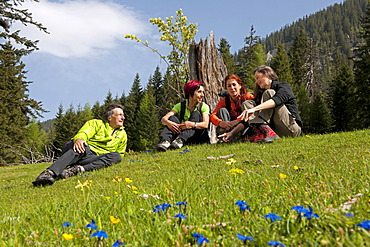 Hikers resting on a mountain pasture, Gesäuse region, Styria, Austria