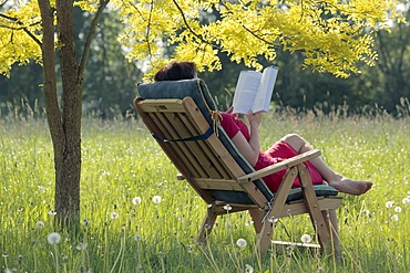 Young woman sitting and reading a book in a garden chair under a deciduous tree, Hagen, Lower Saxony, Germany, Europe