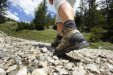 Detail wanderer, legs, mountain shoe