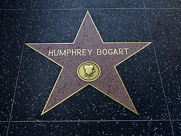 Terrazzo star for the artist Humphrey Bogart, film category, Walk of Fame, Hollywood Boulevard, Hollywood, Los Angeles, California, United States of America, USA, PublicGround