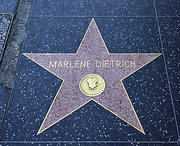Terrazzo star for the artist Marlene Dietrich, film category, Walk of Fame, Hollywood Boulevard, Hollywood, Los Angeles, California, United States of America, USA, PublicGround