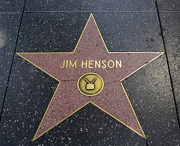 Terrazzo star for the artist Jim Henson, television category, Walk of Fame, Hollywood Boulevard, Hollywood, Los Angeles, California, United States of America, USA, PublicGround