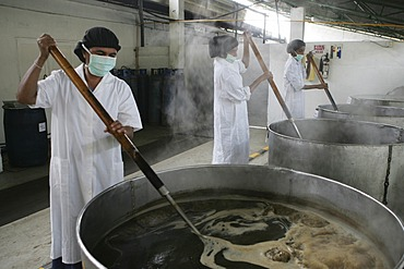 LKA, Sri Lanka : Production of ayurvedic medicine at Hettigoda Industries, the oldes manufacturer of ayurvedic products.