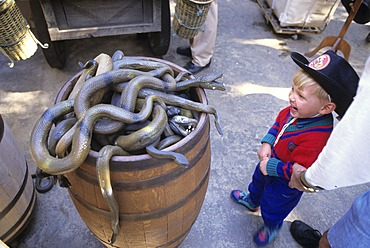 USA, United States of America, California: Disneyland, rubber snakes as souvenirs.