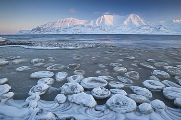 Sea ice forming on the Advent Fjord, Mt Hjorthfellet at back, Longyearbyen, Spitsbergen, Svalbard, Norway, Europe,
