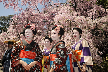 Japanese women in kimonos, procession participants, Hirano Shrine, Kyoto, Japan, East Asia, Asia